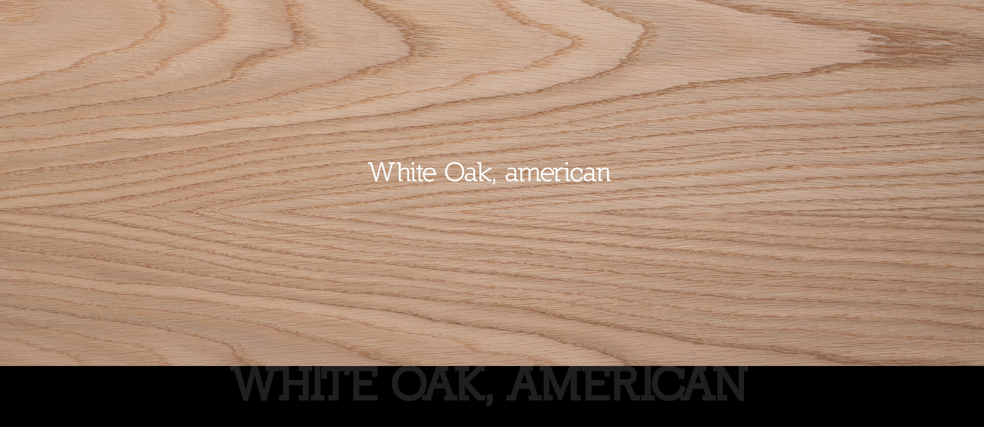 32 WhiteOak american